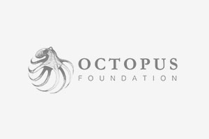 Fondation Octopus